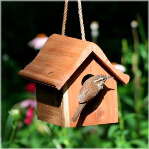 How to choose right birdhouse to attract nesting birds